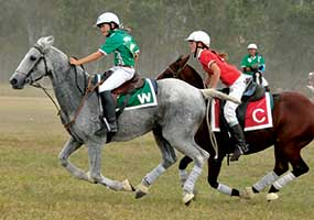 Queensland all the way in 2014 Polocrosse Season