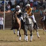 Aus vs Zimbabwe 027 (3) - Copy - Copy - Copy