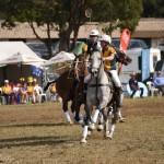 Aus vs Zimbabwe 036 - Copy (2)