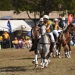 Aus vs Zimbabwe 038 - Copy (2)