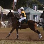 Aus vs Zimbabwe 055 (2) - Copy
