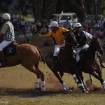 Aus vs Zimbabwe 097 (2) - Copy