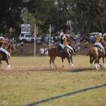 Aus vs Zimbabwe 212