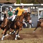 Aust vs Ireland 151 (2)-85